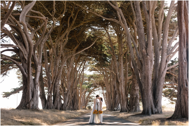 Where to Elope: Point Reyes