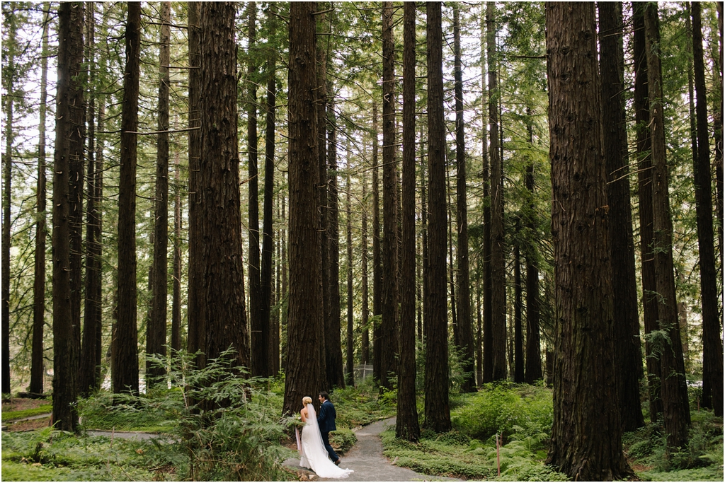 Bride and Groom in the redwoods during their Berkeley Botanical Garden Wedding