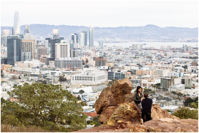 Corona Heights Park Proposal