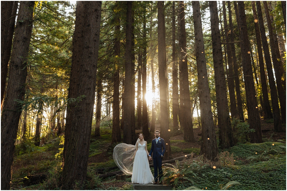 Married couple stands in the redwoods at their redwood wedding venue the Berkeley Botanical Garden, Berkeley